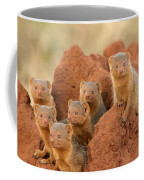 Portrait Of Seven Dwarf Mongooses Coffee Mug by Roy Toft