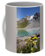 Postcard From Alpes Coffee Mug