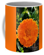 Pot Marigold  Coffee Mug