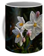 Potato Vine Blossom Coffee Mug