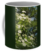 Potchen's Cascade Coffee Mug