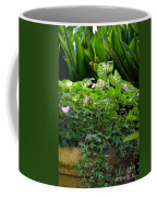 Potted Shades Of Green Coffee Mug