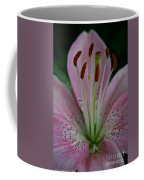 Powdery Pink Coffee Mug