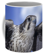 Prairie Falcon In Flight Coffee Mug