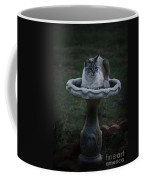 Pray For Rain Coffee Mug