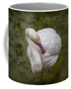 Preening. Coffee Mug