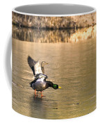 Preflight Check Coffee Mug