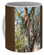 Preparing For Renewal  Coffee Mug