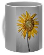 Pressed Sunshine Flower Coffee Mug