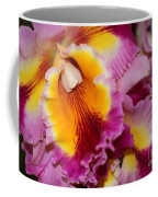 Pretty And Colorful Orchids Coffee Mug