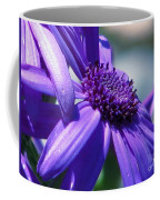 Pretty In Pericallis Coffee Mug by Rory Sagner