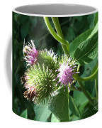 Pretty Prickles Coffee Mug