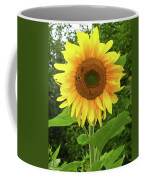 Pretty Sunflower  Coffee Mug