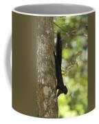 Prevosts Squirrel Facing Downward Coffee Mug