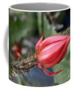 Prickly Bud Coffee Mug