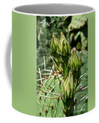 Prickly Pear Cactus Buds Coffee Mug