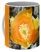 Prickly Pear Cactus Flower Coffee Mug