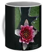Primo Waterlily Coffee Mug