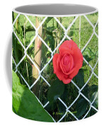Princesse Rose Coffee Mug
