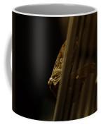 Prisoner Of The Vortex Coffee Mug