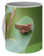 Private Eyes Coffee Mug