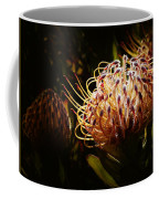 Protea Flower 10 Coffee Mug