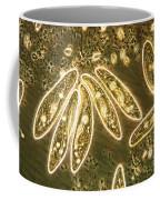 Protozoa, Paramecium, Lm Coffee Mug