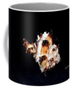 Puff Fish Seashell Coffee Mug