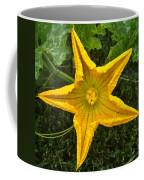 Pumpkin Flower 1 Coffee Mug