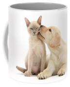 Puppy Licking Cat Coffee Mug