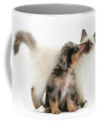 Puppy Licking Kitten Coffee Mug