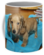 Puppy On Blue Blanket Coffee Mug