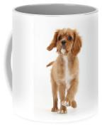 Puppy Trotting Foward Coffee Mug