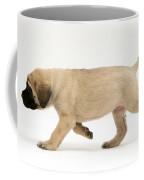 Puppy Trotting Coffee Mug by Jane Burton