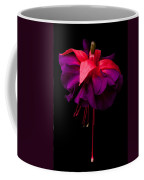 Purple And Pink Beauty Coffee Mug