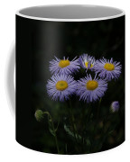 Purple Asters Coffee Mug