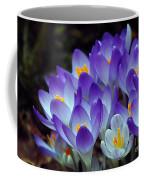 Purple Crocus Cluster Spring Choir Coffee Mug