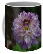 Purple Dahlia 3 Coffee Mug