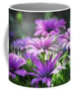 Purple Daisies  Coffee Mug