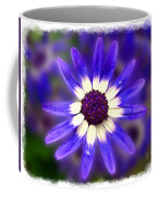 Purple Daisy Photoart Coffee Mug