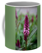 Purple Parfait Coffee Mug