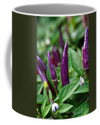 Purple Pepper Life Cycle  Coffee Mug