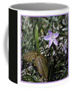 Purple Spring Trail Flower Coffee Mug