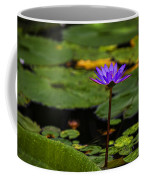 Purple Waterlily Coffee Mug