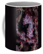 Pygmy Seahorse, Australia Coffee Mug