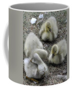 Quadruplets Qp Coffee Mug