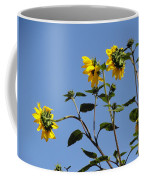 Quicksilver Sun Coffee Mug