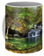 Quinn Run Cascades Coffee Mug