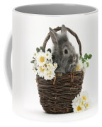 Rabbit In A Basket With Flowers Coffee Mug