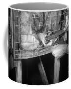 Rabid Fox, 1958 Coffee Mug
